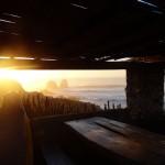 050312 Punta de Lobos8