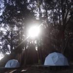 Cool post-tsunami space domes